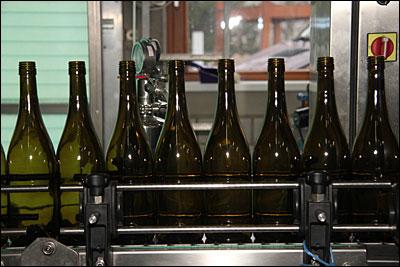 Abfüllung der 2012er Weißweine