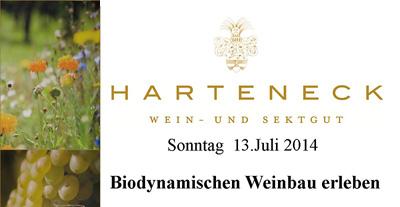Weingut Harteneck Weinwanderung und Culinarium