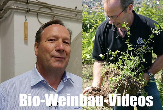 Bio-Weinbau-Videos