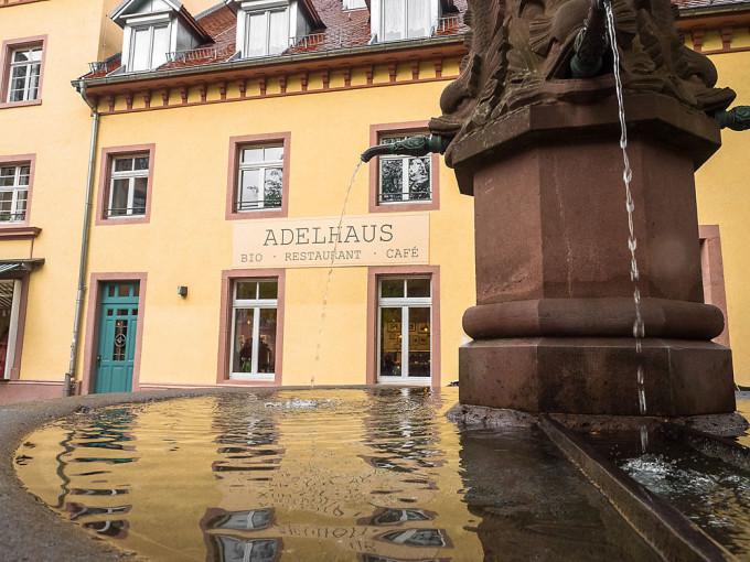 Im Adelhaus können die Besten Bioweine Baden-Württemberg in einem vegetarischen Drei-Gänge-Menü verkostet werden.